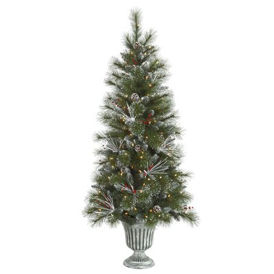 Vickerman Glitter 5' Green Mixed Pine Artificial Christmas Tree with 150 Clear Lights
