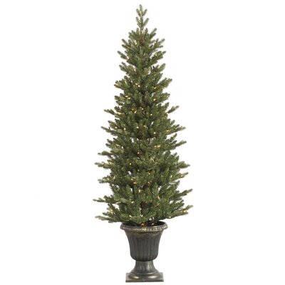 Vickerman 5' Green Slim Medium Noble Artificial Christmas Tree with 200 Clear Lights with Pot ...