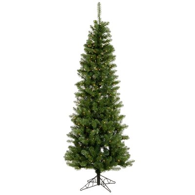 Vickerman Salem Pencil Pine 6.5' Green Artificial Christmas Tree with 250 Clear Lights with ...