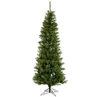Vickerman Salem Pencil Pine 7.5' Green Artificial Christmas Tree with 270 Warm White LED Lights ...