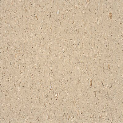 "Congoleum Alternatives 12"" x 12"" Vinyl Tile in Golden Wheat"