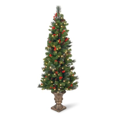 National Tree Co. Crestwood Spruce Entrance 5' Green Artificial Christmas Tree with 150 Pre-Lit LED Lights with Urn Base