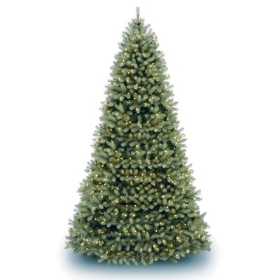 National Tree Co. Douglas Fir Downswept 12' Green Artificial Christmas Tree with Clear Lights ...