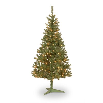 National Tree Co. Pre-Lit 6' Canadian Grande Fir Artificial Christmas Tree with 200 Pre-Lit ...