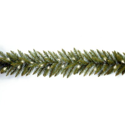"National Tree Co. Dunhill Fir Pre-Lit 9' x 10"" Garland"