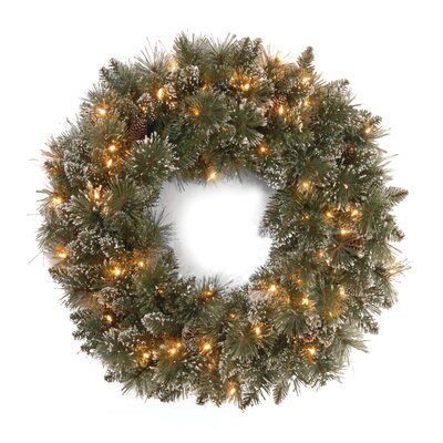 National Tree Co. Glittery Bristle Pine Pre-Lit 30