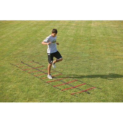 "PowerMax 180"" Double Agility Ladder"