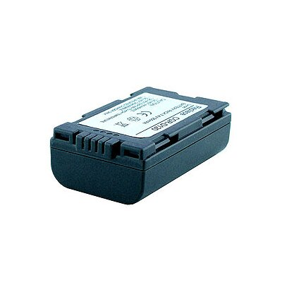 Denaq New 950mAh Rechargeable Battery for PANASONIC Cameras