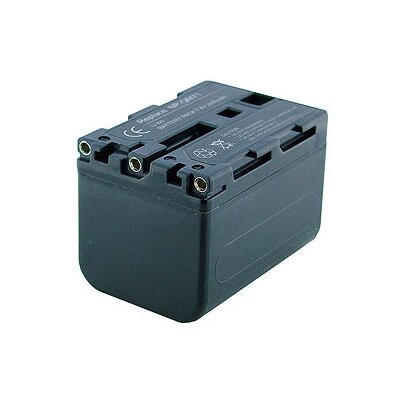 Denaq New 2900mAh Rechargeable Battery for SONY Cameras