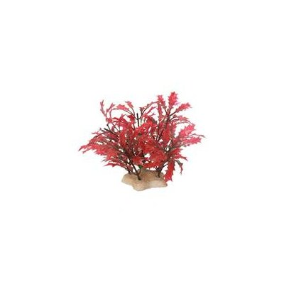 Pure Aquatic Natural Elements Crimson Water Holly Aquarium Ornament in Crimson