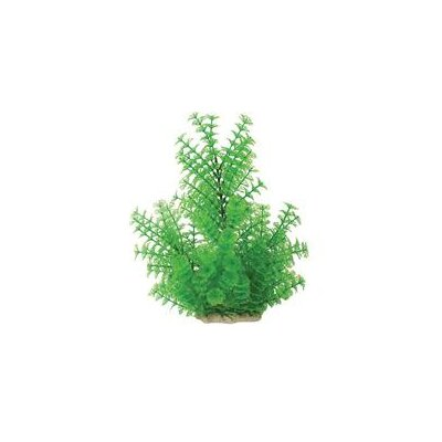 Pure Aquatic Natural Elements Ambulia Aquarium Ornament in Green