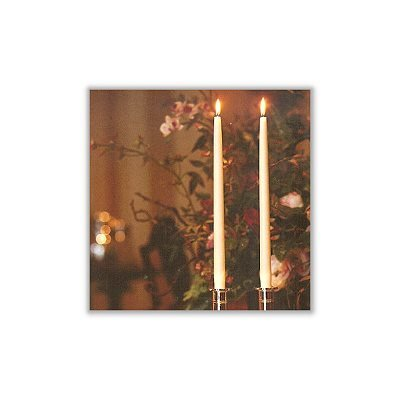 Light In the Dark New Elegant Taper Candles (Set of 100)