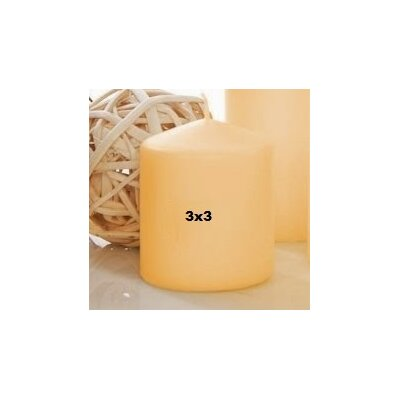 Light In the Dark Unscented Pillar Candle