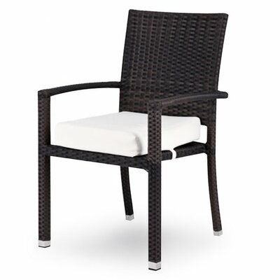 Source Outdoor Zen Dining Arm Chair with Cushion