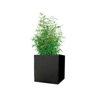 Modern Outdoor Kenji Square Planter Box