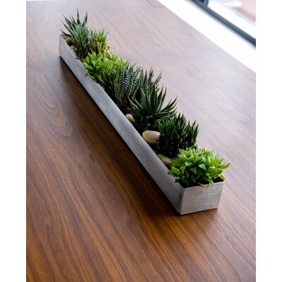 Gus* Modern Rectangular Fruit Trough Planter