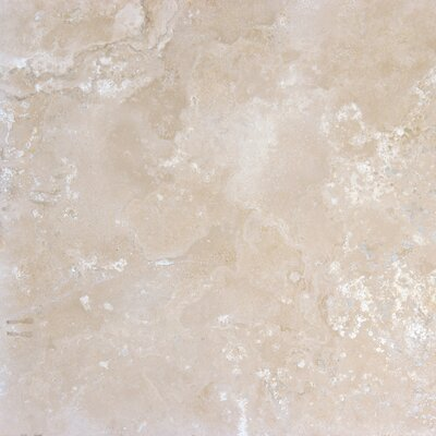 "MS International 16"" x 16"" Honed Travertine Tile in Durango Antique"