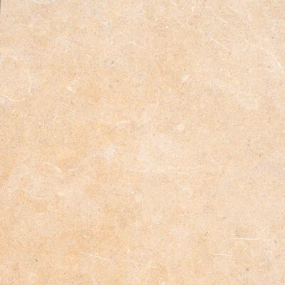 "MS International 16"" x 16"" Honed Limestone in Halila"