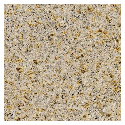 "MS International 31"" x 18"" Polished Granite Tile in Giallo Fantasia"
