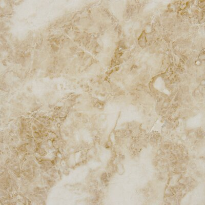 "MS International 12"" x 12"" Polished Marble Tile in Crema Cappuccino"