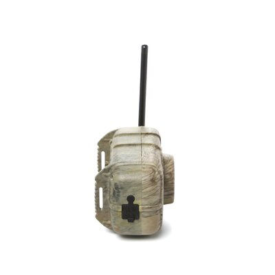 SpyPoint Wireless Motion Detectors