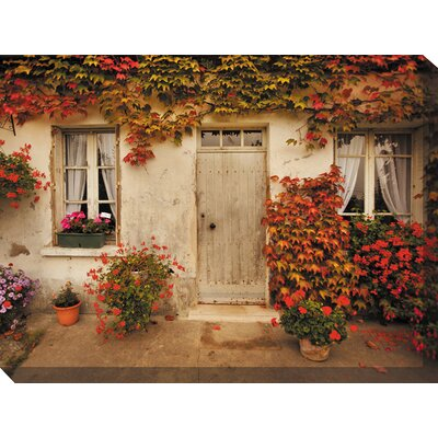 West of the Wind Outdoor Canvas Art Red Ivy Photographic Print on Canvas