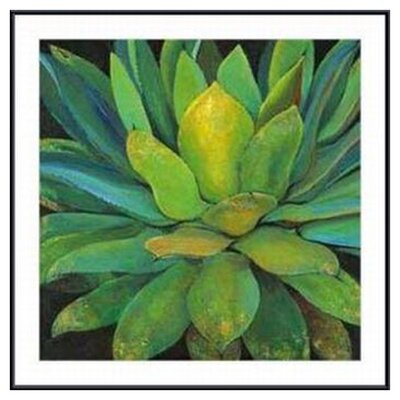 Agave by Jillian Design Metal Framed Art Print