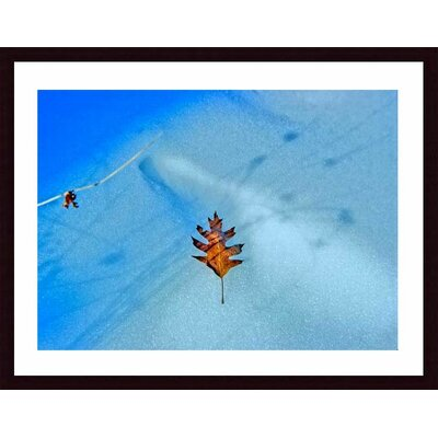 Barewalls Leaf on Icy Pond Wood Framed Art Print