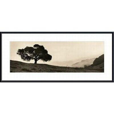 Barewalls Black Oak Tree Metal Framed Art Print