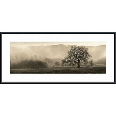 Meadow Oak Tree Metal Framed Art Print