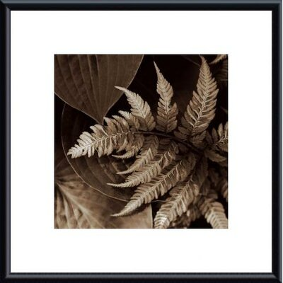 Barewalls Painted Ferns II Metal Framed Art Print