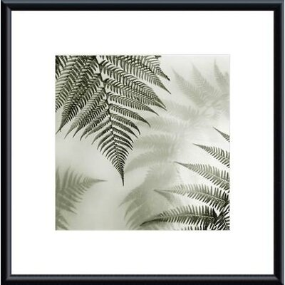 Barewalls Ferns No. 1 Metal Framed Art Print