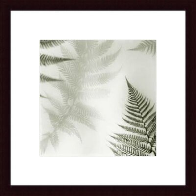Barewalls Ferns No. 2 Wood Framed Art Print
