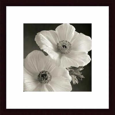 Barewalls Poppy Study I Wood Framed Art Print