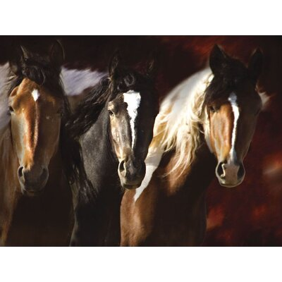 Compadres Gallery Wrapped Canvas Art