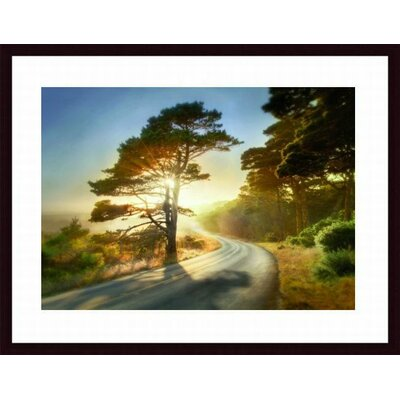 Barewalls Too Much to Ask Wood Framed Art Print