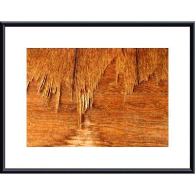 Barewalls Weathered Plywood Metal Framed Art Print