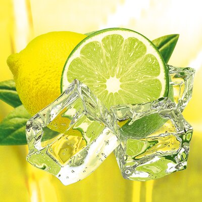 Platin Art Deco Glass Fresh Lemon and Lime Wall Decor