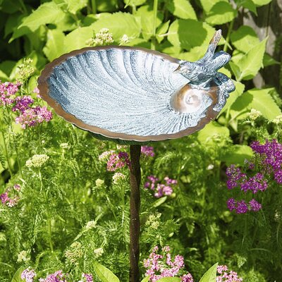 ACHLA Scallop Shell Birdbath and Feeder