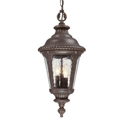 Acclaim Lighting Surrey 3 Light Outdoor Hanging Lantern