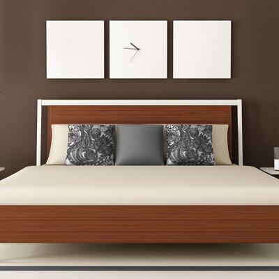 DENY Designs Valentina Ramos Bird Polyester Throw Pillow