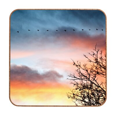 DENY Designs Bird Line by Bird Wanna Whistle Framed Photographic Print Plaque