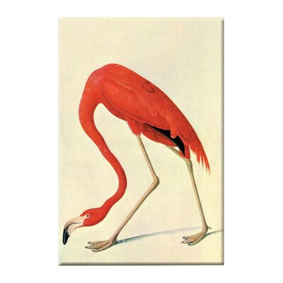 <strong>Buyenlarge</strong> Flamingo Canvas Wall Art