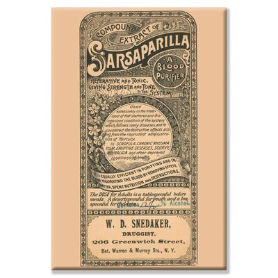 Buyenlarge Compound of Sarsaparilla Canvas Wall Art