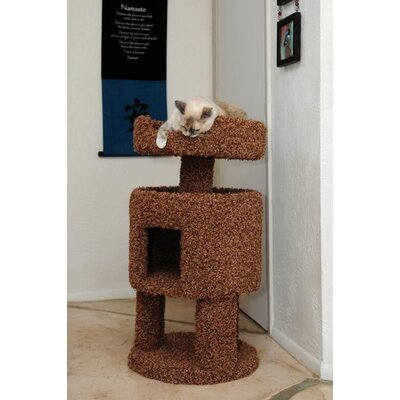 New Cat Condos Contemporary Cat House