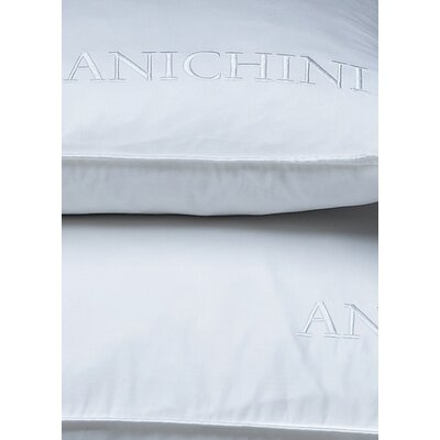 Anichini Gwen Down Pillow (Set of 2)