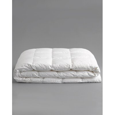Anichini Faux Down Cotton Sateen Blanket