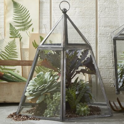 Two's Company Take a Cover Hexagonal Plant Terrarium Cloche