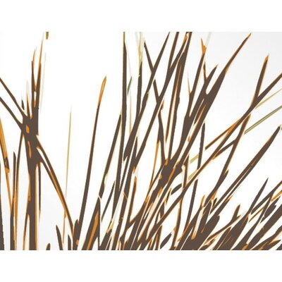 Inhabit Botanicals Thatch Slat Wall Hanging