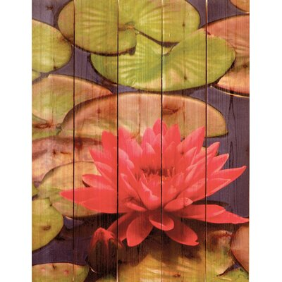 Gizaun Art Lotus Blossom Photographic Print